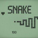 14750191905056-snake
